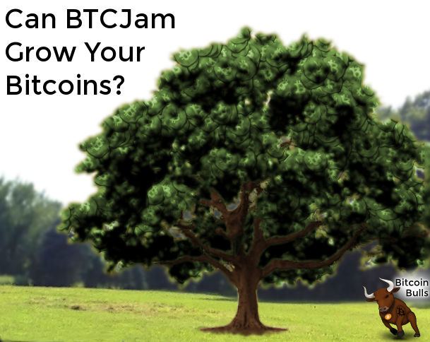 Growing Bitcoins